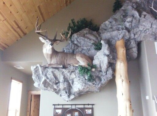 Man Cave Chair 305 best images about Taxidermy on Pinterest