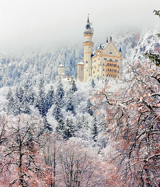 Neuschwanstein Castle - 19th-century Bavarian palace on a rugged hill near Hohenschwangau and Füssen in southwest Bavaria, Germany by Luiz Pires