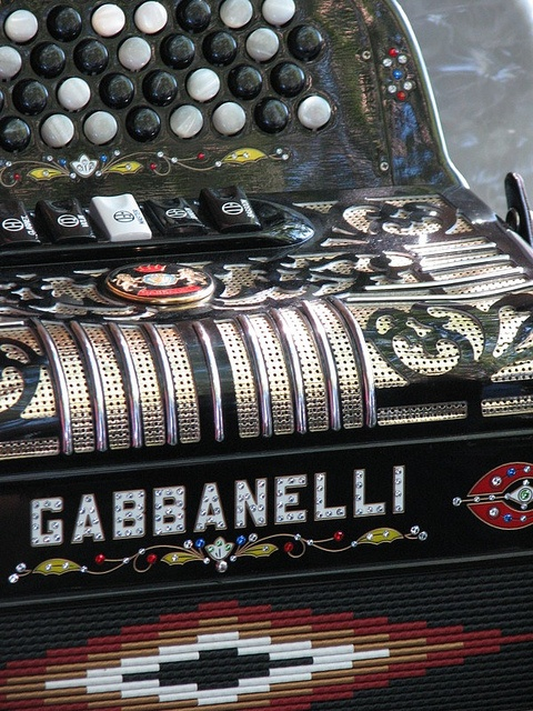 Gabbanelli Accordion at the Cotati Accordion Festival.