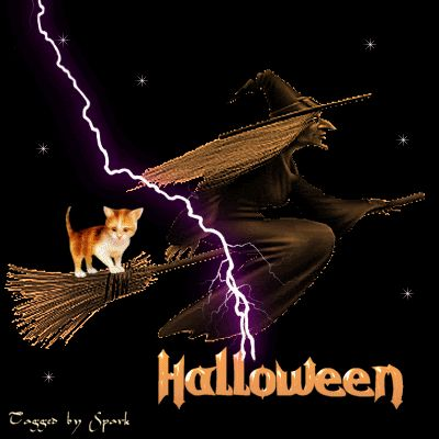 Halloween Witch Witch Halloween Happy Halloween Graphic Halloween Quote  Halloween Greeting