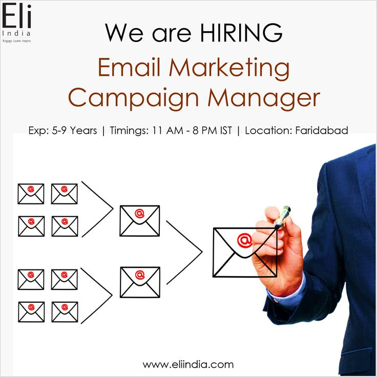 Email Marketing Campaign Manager Jobs Faridabad Delhi NCR - Eli India