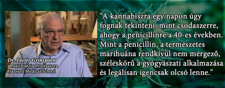 Kannabisz
