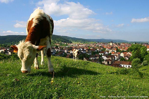 © PARRIAUX Fabrice La Capitale du Haut-Doubs : une ville à la montagne !