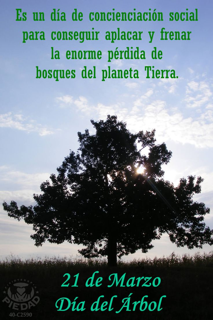 21 de Marzo Día del Árbol #21Marzo #DíadelÁrbol