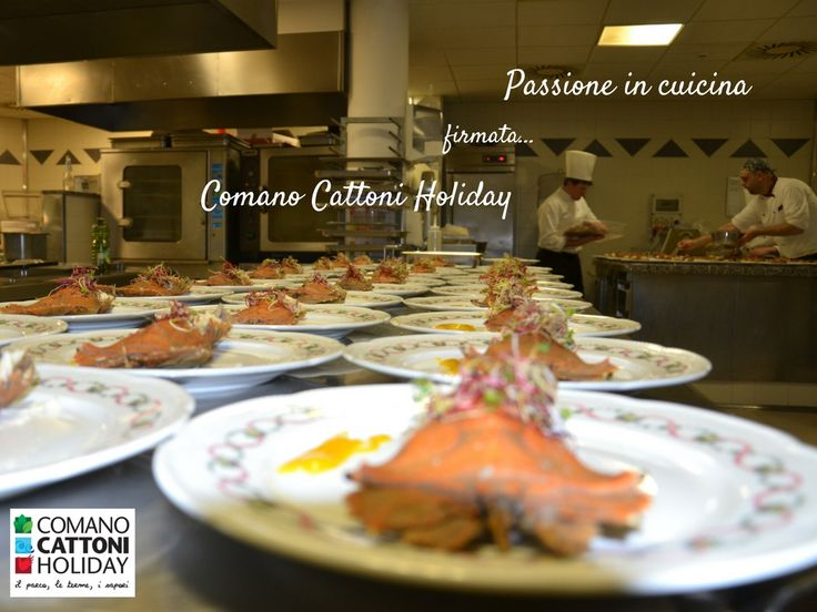 Non servono molte parole: i piatti dei nostri chef parlano da solo! #cunica #passione #food #gourmet