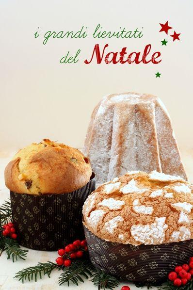 Una raccolta di tutte le nostre ricette dei Grandi lievitati del Natale per condividere con voi il piacere e l'orgoglio di sfornali nelle nostre case.