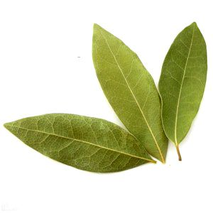 Bay leaf measurements and substitutes