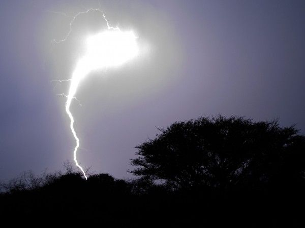 Seven types of lightning—from the common to the bizarre