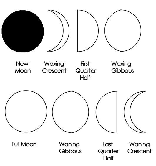 moon phases coloring page for kids