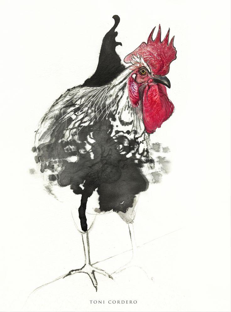 El gallo corrupto