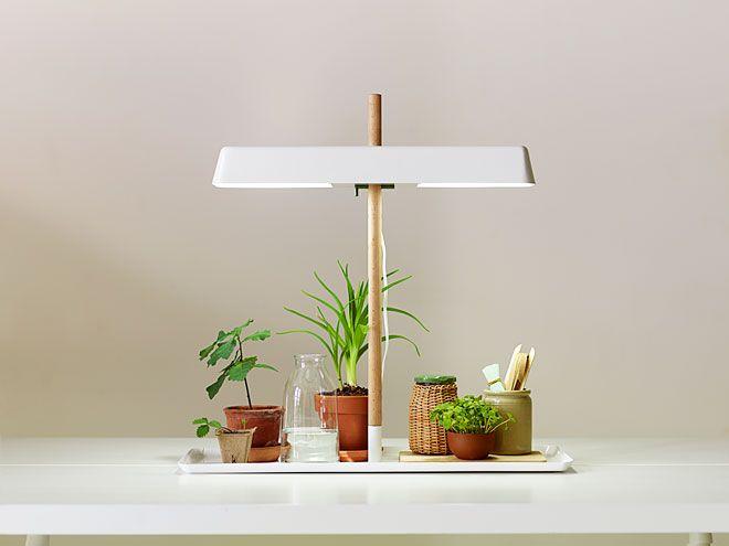 Miss moss kekkil plant light stand wishlist pinterest - Plant growing lamps ...