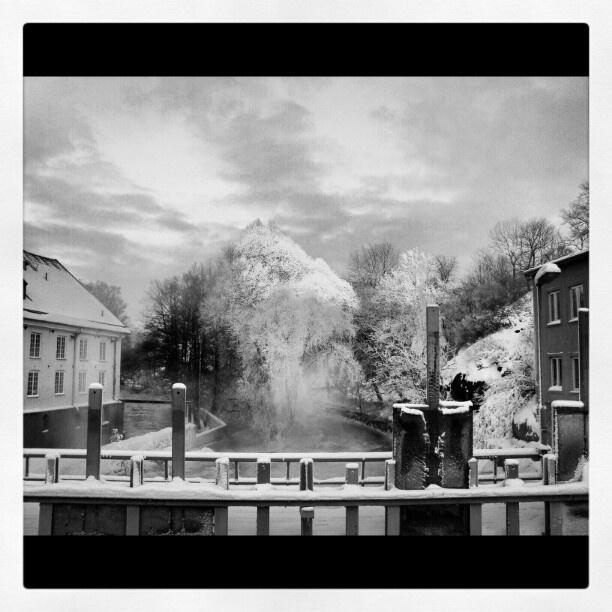 Torshälla Sweden. Pic taken by Jane Bjällhage. Look me up on Instagram, @janebjallhage :)