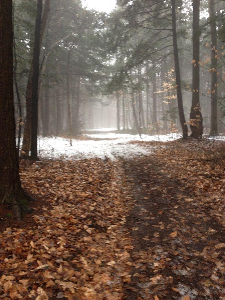 Fall? Winter?