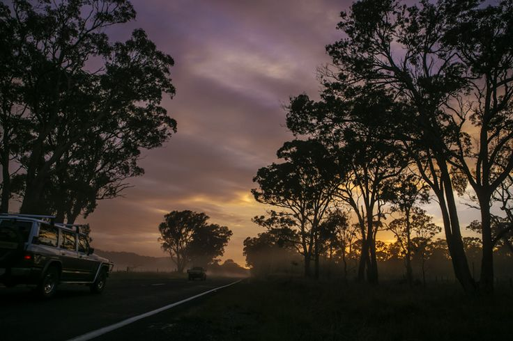 After being awake for 48 hours and driving for 30.5 hours of them, I still had the capacity to take in this spectacular phenomenon that happens every morning - Sunrise in the Bush through the mist
