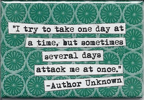 I try to take one day at a time, but sometimes several days attack me at once!