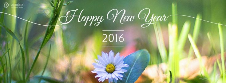 Nature - New Year Facebook Cover Photo 2016