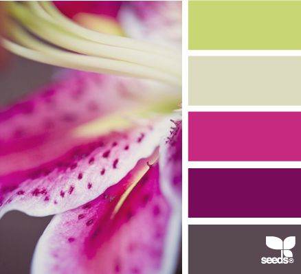 macro flora, I love the subtle green with the vibrant purples. Great for little girls loving purple.
