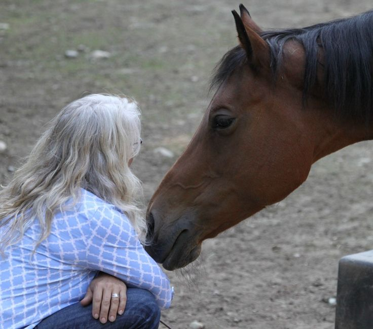 The social and emotional benefits of working with horses are being recognized by growing numbers of therapists/coaches who work with autistic children, young people with behavioral problems, adults with depression or PTSD. Train to practice in equine and inter-species experiential learning and psychotherapy at #ROOTSInstitute: http://www.oneheartwild.org/ROOTS-spring-16.html