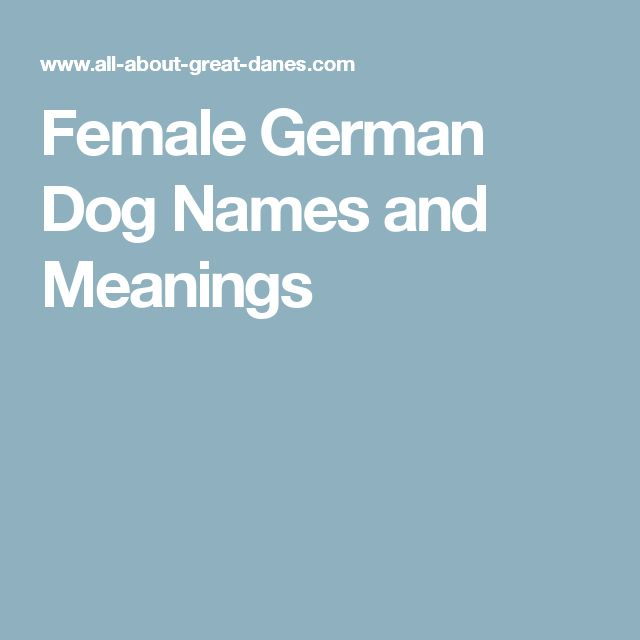 Female German Dog Names and Meanings