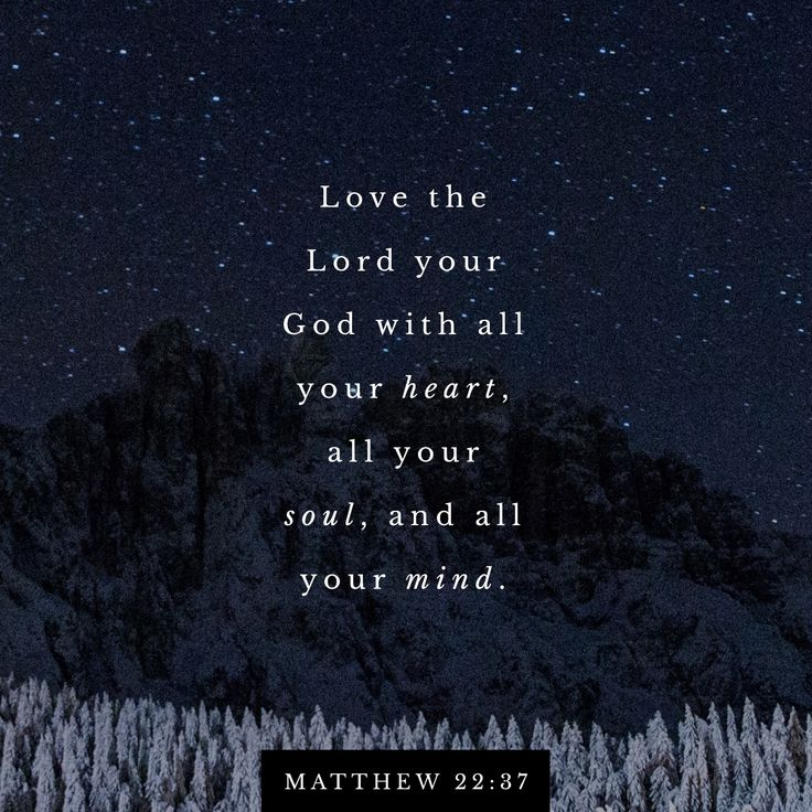 """Jesus said to him, ""' Love the Lord your God with all your heart, with all your soul, and with all your mind.'"" ‭‭Matthew‬ ‭22:37‬ ‭NET‬‬ http://bible.com/107/mat.22.37.net"