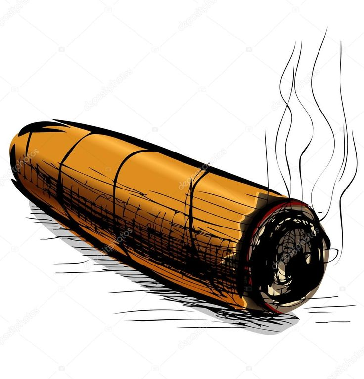 Image result for cigar drawing