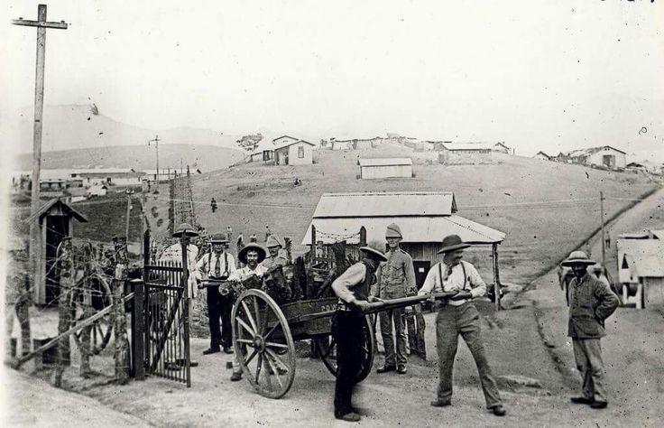 POW's carting firewood at Diyatalawa Camp. ABW...