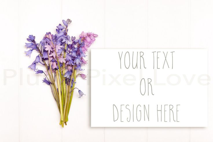 Styled Stock Photos   Bluebells   instagram   paper   Overlay text   Digital Image   desktop   flat lay    download   Print  SSP53 by plumspixellove on Etsy