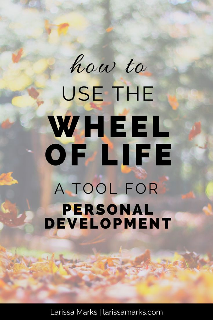 how to use the wheel of life for personal development