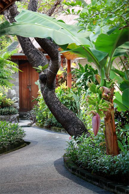 Tropical Garden at Alam KulKul Boutique Resort - Jalan Pantai Kuta - Bali