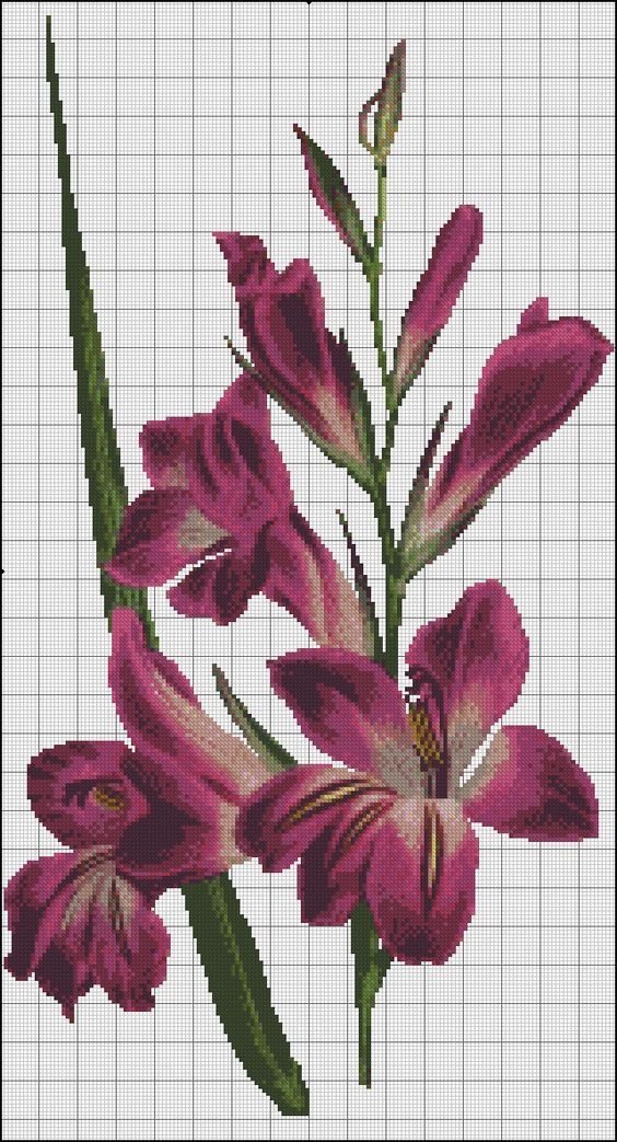 1ff47858c41194c789a057e79780a68b.jpg (564×1043)