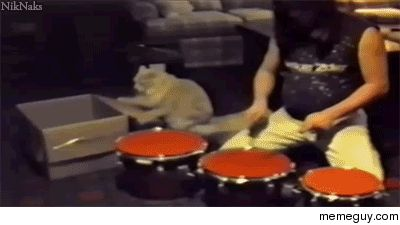 You are doing it wrong Faster human #gif #doing #wrong #faster #human #animated #funny #humor #comedy #lol