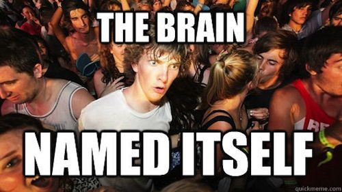 Sudden Clarity Clarence Meme Brain