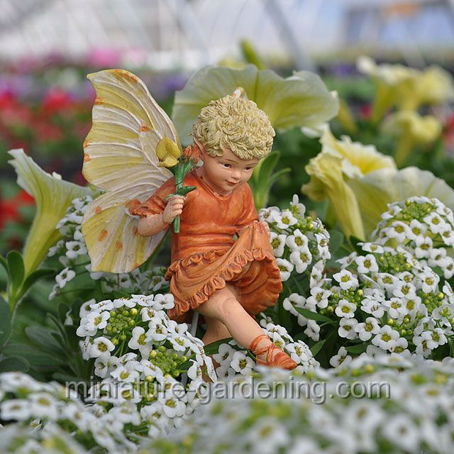 Birdsfoot Trefoil Fairy…miniatures…fairy garden ideas and supplies for your … – Fairy Garden Tea Party