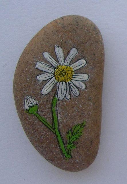 painted rock margherita   Flickr - Photo Sharing!