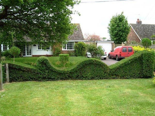 15 Amazing Ideas Of Topiary Art For Your Garden.  Love this hedging for the front yard instead of a gate