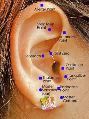 Auricular therapy is one of the most important components of traditional Chinese acupuncture. It is a specialized form where the auricle (ear) is used to stimulate various organs and meridians in the body. The ear represents a fetus in the womb but in an inverted position. It is a microcosm of the macrocosm: the ear represents the entire body. by nanette