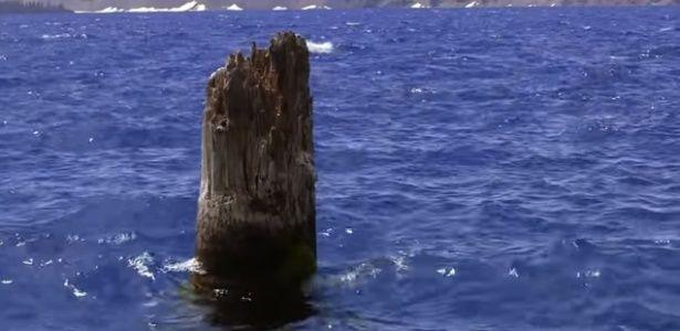 Tronco que flutua na vertical há 120 anos intriga a ciência. Lago Crater, Oregon