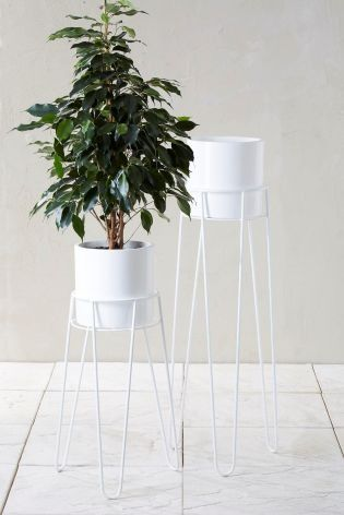 A contemporary way to show of your greenery! Invest in statement plant stands and make a statement this summer.