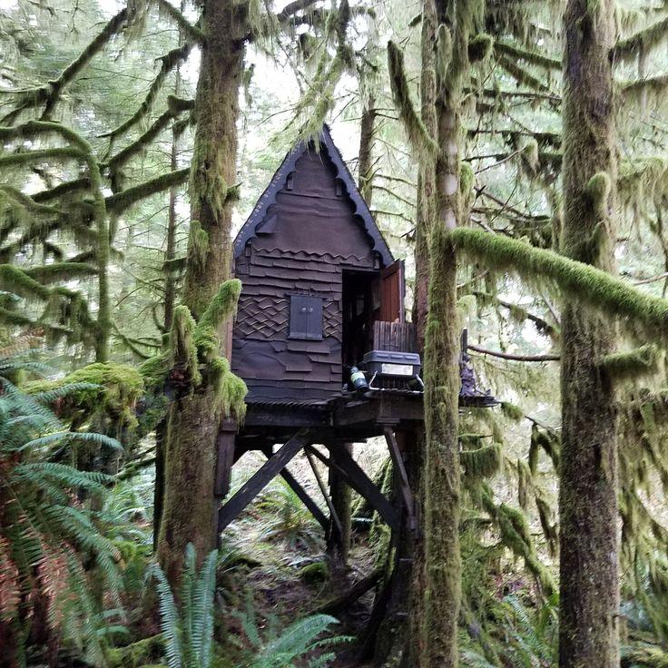 This quaint Northwest cabin in Snoqualmie Forest