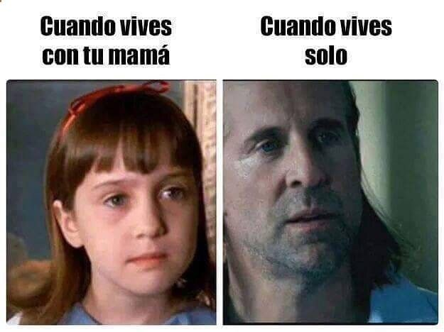 Imagenes de Humor #memes #chistes #chistesmalos #imagenesgraciosas #humor www.megamemeces.c... ➫➬➫ http://www.diverint.com/memes-caras-chistosas-secreto-raid-descubierto