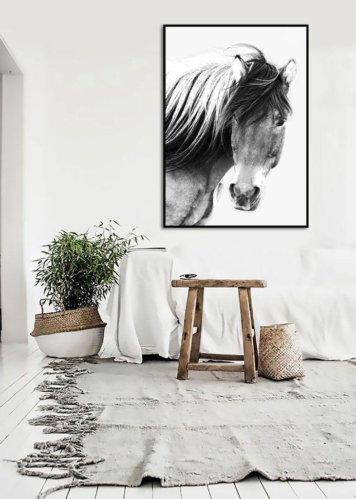 $159 Wild Brumby Horse Black & White Wooden Framed Wall Art