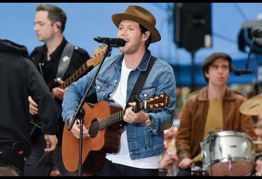 Watch Niall Horan's 'On the Loose' TV Debut, One Direction Sing-Along on 'Today'