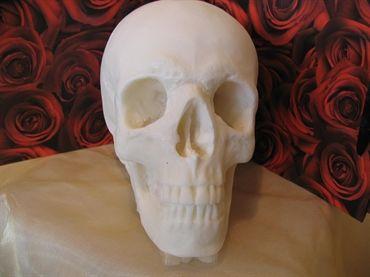 'Everlasting' Skull Large