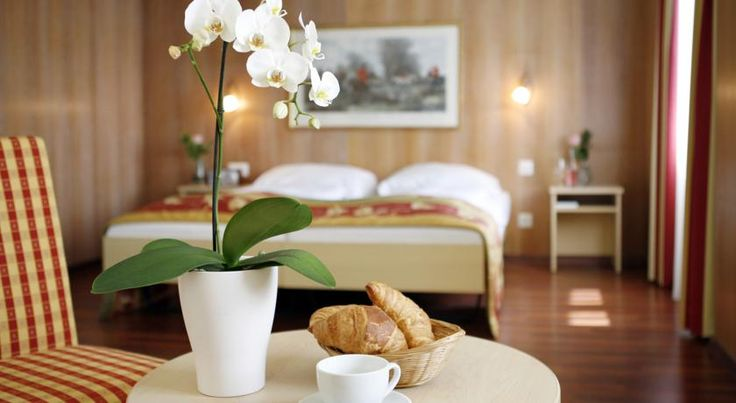 Hotel De la Paix Luzern Hotel De la Paix is located in the heart of Lucerne, near the lion monument, at the entrance of the old quarter and 200 metres from the famous Vierwaldstätter lake.  All rooms are ensuite and feature free Wi-Fi.
