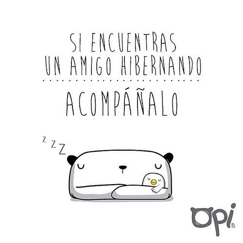 Si encuentras un amigo hibernando... Acompáñalo #opi #cute #kawaii #bear #illustration #ilustración #oso #dibujo | Flickr - Photo Sharing!