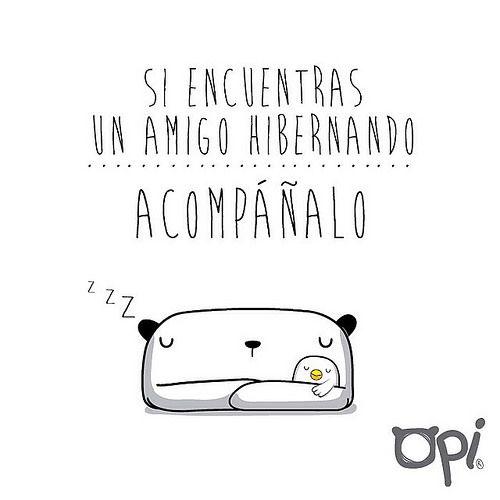 Si encuentras un amigo hibernando... Acompáñalo #opi #cute #kawaii #bear #illustration #ilustración #oso #dibujo | Flickr - Photo Sharing!
