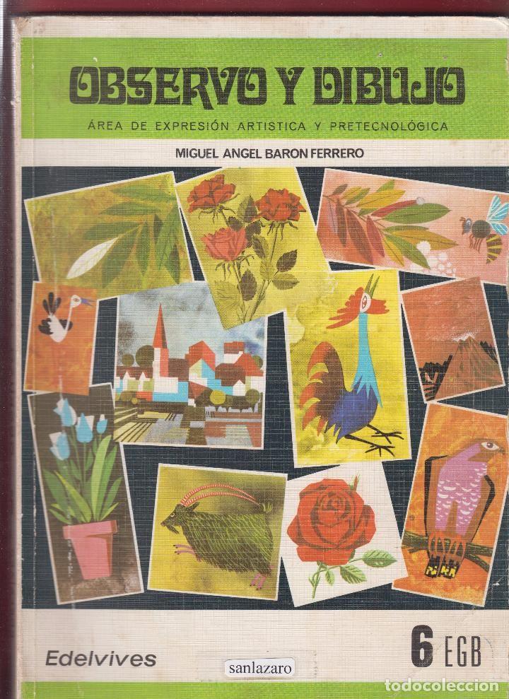 Observo Y Dibujo Miguel Angel Baron Ferrero 208 Páginas Zaragoza Año 1984 Le2026 Miguel Angel Recuerdos De La Infancia Zaragoza