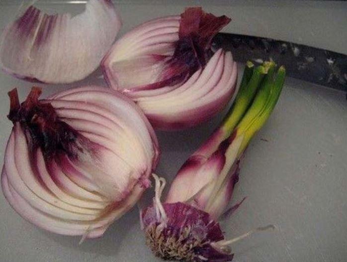 je kunt kruiden en groente een tweede leven geven door ze opnieuw te planten, hier vind je alle tips voor het opnieuw planten van uien, aardappelen en co.