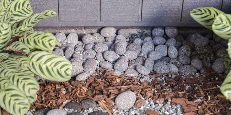 Charcoal Lava Exotic Pebbles #pebblesstones