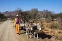 Donkey cart route Cederberg